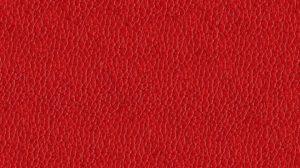 Alfa 12 Ред
